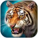 老虎模拟器OL