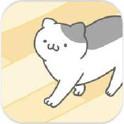 猫咪很可爱可我是幽灵